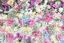wedding flowers background beautiful real flower background for wedding backdrop stock photo