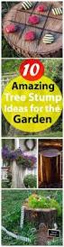 Idea For Backyard Landscaping by 10 Amazing Tree Stump Ideas For The Garden Balcony Garden Web
