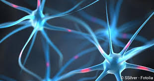 muskelschwäche bei kindern spinale muskelatrophie ursachen symptome behandlung netdoktor de