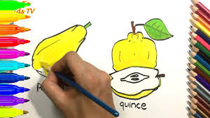 how to draw and color papaya quince coloring pages for kids