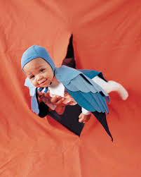lobster halloween costumes baby costumes martha stewart