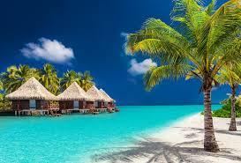 island holidays label holidays