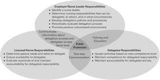 Agency Nurse Job Description National Guidelines For Nursing Delegation Journal Of Nursing