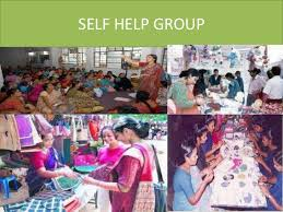 self help finance risk management for shgs acme skills india
