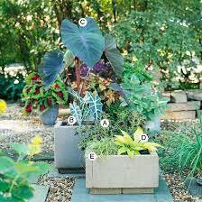 Plant Combination Ideas For Container Gardens - 30 best landscaping ideas images on pinterest landscaping ideas