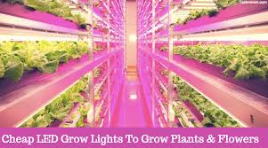 led grow lights best cheap led grow lights may 2018 amazon new released