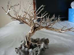 aquarium driftwood bonsai