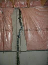 damp basement causes solutions and wall repair