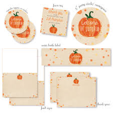 lil baby shower decorations 21 pumpkin baby shower ideas pretty my party