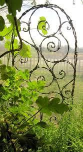 Small Trellis Planter Best 25 Hops Trellis Ideas On Pinterest Hops Plant Vine Fence