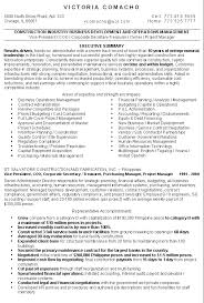resume sample ceo manufacturing management