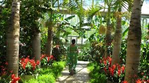 Botanic Garden Glencoe Entrance To Another Theme Park Picture Of Chicago Botanic Garden