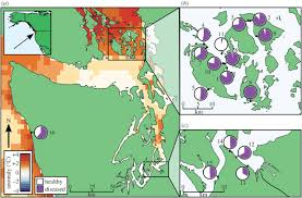 Map Of Washington Coast by Ochre Star Mortality During The 2014 Wasting Disease Epizootic
