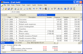 download daily income expenses template software income statement