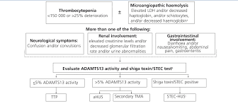 an update for atypical haemolytic uraemic syndrome diagnosis and