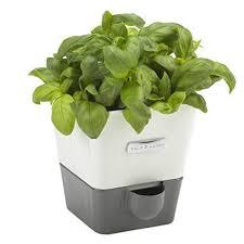 10 best indoor herb gardens in 2017 indoor gardens for growing herbs