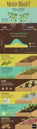 Raised Gardens You Can Make by Best 25 Garden Mulch Ideas On Pinterest Gardening Direct