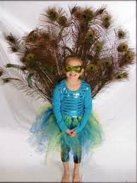 Peacock Halloween Costume Girls Peacock Costumes Girls Peacock Costume Halloween