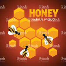 composition of the honey bee and honeycomb stock vector art