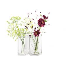 Lsa Vases Lsa Echo Vase Set 24cm Clear Black By Design