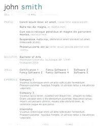 resume exle format excel resume template excel resume template doctor resume template