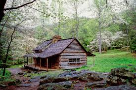 what pet friendly nc mountain cabins are to rent kool