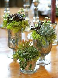 succulent centerpieces friday five wedding flowers on a budget succulent centerpieces