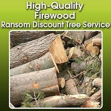 firewood sales fort wayne in ransom discount tree service