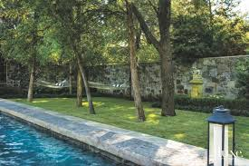 poolside hammocks existing elm trees with wall luxe