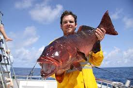 catch of the day picture of northern blue fishing charters