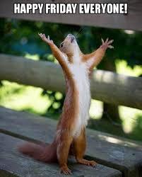 Happy Friday Memes - happy friday squirrel friday meme