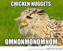 White Owl Meme - cute owl enjoying his nuggets 1 meme your friends