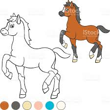 coloring page color me horse little cute foal stock vector art