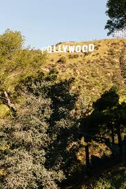 seize the hollywood sign curbed la