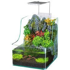 desk terrarium kit 91hae7 gw3l sl1500 amazon com penn plax aqua