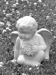 cherub free pictures on pixabay