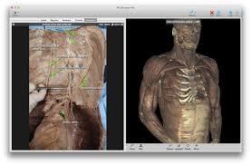 3d Medical Software Toltech Vh Dissector 5