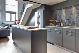 Grey Kitchens Ideas Grey Kitchen Cabinetsfantastic Grey Kitchen Modern Interior Design