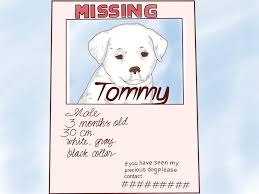 found dog poster template