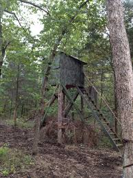754 best tree stand ideas images on deer blinds