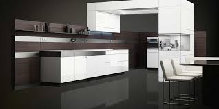 awesome modern kitchen design with trendy cabinetry home design