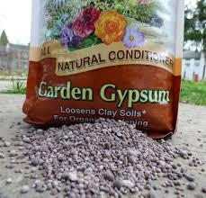 fertiliser for native plants garden gypsum information u2013 is gypsum good for the soil