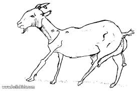 free coloring pages goats free smiley face coloring pages page cow printable technogen info