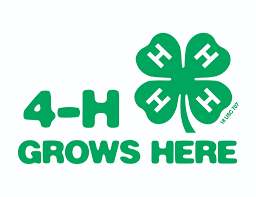 join one of nash county 4 h clubs north carolina cooperative