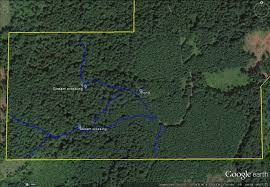 Oregon Google Maps by Mapping Your Forest With Google Earth And A Gps Phone App Treetopics