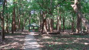 A Place Plot Nilambur Teaks Conolly S Plot