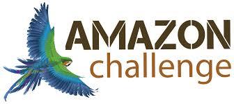 best on amazon amazon challenge jungle adventure large minority