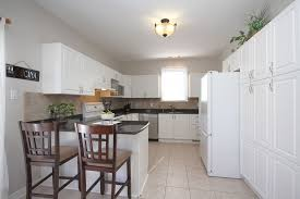 what kind of paint on kitchen cabinets what kind of paint on kitchen cabinets all about house design