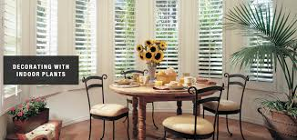 decorating with plants u2013 design ideas by classic window coverings