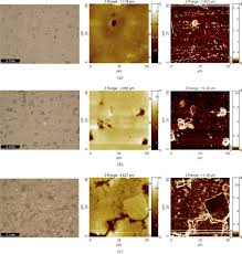 investigation of the impact of simulated solar radiation on the